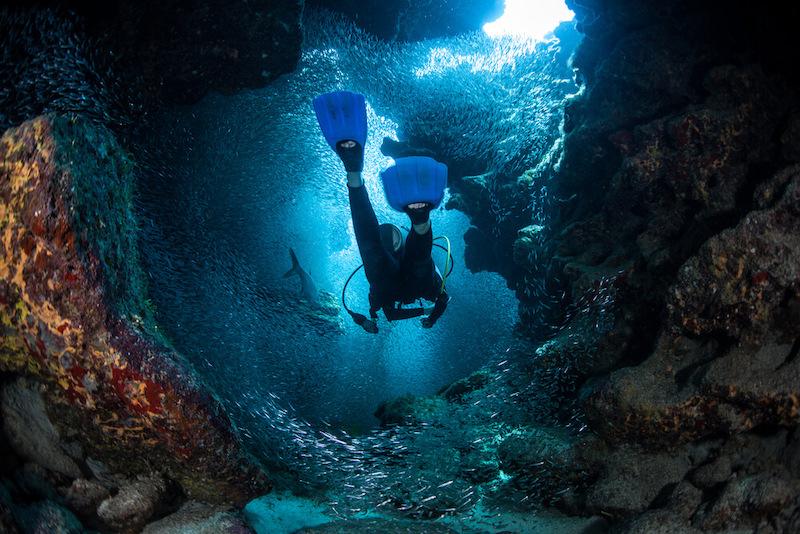 Come diving in Paris