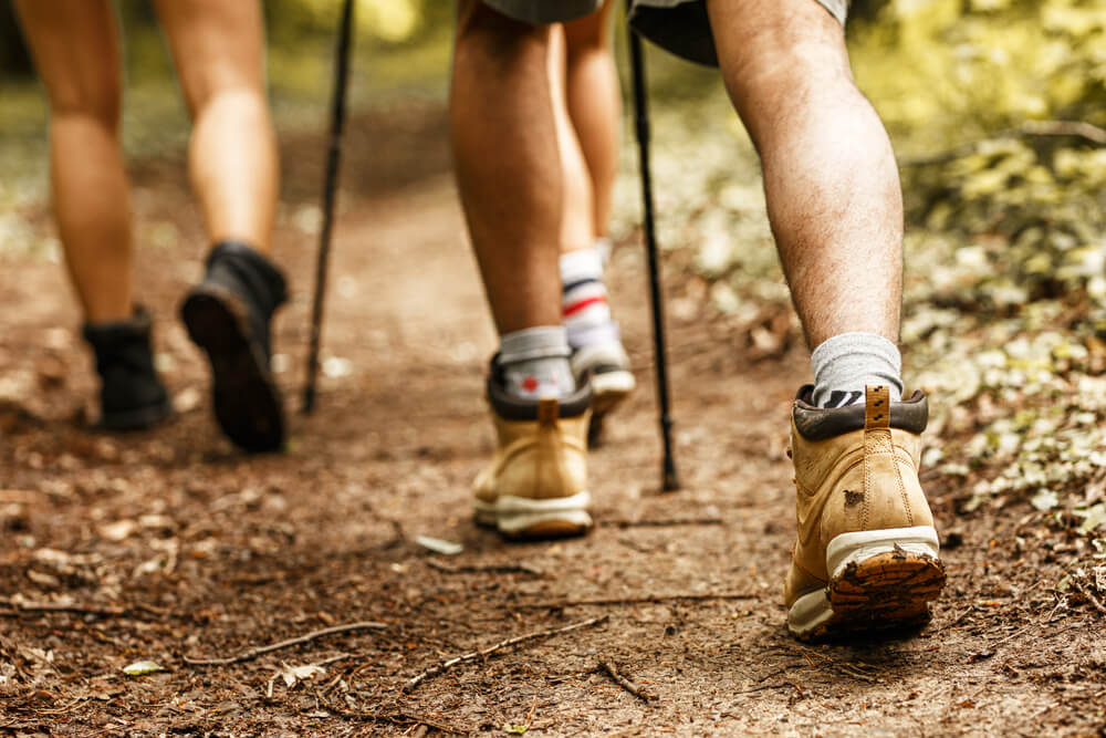 Come hiking in Paris with your family